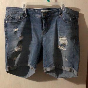 Torrid denim shorts.